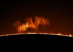 Prominence (plndrw) Tags: ha hydrogenalpha prominence zwo televue televue25xbarlow sun solar