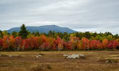 Mount Katahdin, Maine (jtr27) Tags: dscf2945xl jtr27 fuji fujifilm xt20 xtrans xf 1855mm f28 rlmois kitlens kitzoom mount katahdin maine goldenroad newengland landscape mountain autumn foliage northernmaine wilderness