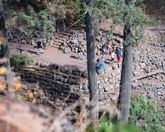 Overlook_120015 (gpferd) Tags: evergreen people plant rock tree burney california unitedstates us