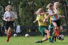 """HBC Voetbal • <a style=""""font-size:0.8em;"""" href=""""http://www.flickr.com/photos/151401055@N04/44699668275/"""" target=""""_blank"""">View on Flickr</a>"""