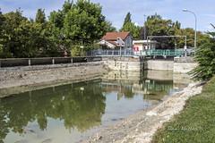 Fuites d'eau dans le Canal ! (La Marnaise de Photographie) Tags: reims reimstourisme canal couleeverte eau arbres marne