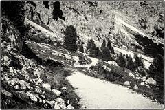 No Horizon... (old style) (Ody on the mount) Tags: anlässe bäume dolomiten em5ii felsen felswand fototour italien mzuiko2518 omd olympus pflanzen südtirol urlaub wanderung wege bw hiking monochrome rocks sw sepia trees walking ways