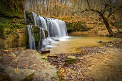 Late Fall At Hidden Falls 2 - Nerstrand Big Woods State Park, MN (j-rye) Tags: creek sonyalpha sonya7rm2 ilce7rm2 mirrorless nerstrandbigwoodsstatepark minnesota fall nature rokinon12mmf20