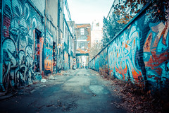 Graffiti Alley (A Great Capture) Tags: agreatcapture agc wwwagreatcapturecom adjm ash2276 ashleylduffus ald mobilejay jamesmitchell toronto on ontario canada canadian photographer northamerica torontoexplore fall autumn automne herbst autunno 2016 colours colors colourful colorful cityscape urbanscape eos digital dslr lens canon 70d outdoor outdoors outside ir design graffiti mural streetphotography streetscape photography streetphoto street calle wet water agua eau