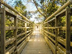 Plataforma (Jaime Sales) Tags: bocadaonça trilha bonito ms brasil brazil plataforma natureza caminho infinito corrimão platform path endless railing track