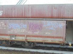 197 (en-ri) Tags: rotels uoa crew tag lilla viola train torino graffiti writing treno merci freight