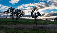 NSW Landscape (StefanKleynhans) Tags: nikon d800e nsw australia landscape