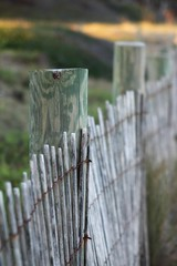 Happy Beach Fence Friday...(Explored) (Patlees) Tags: fence beach hff nc coast explored frontpage