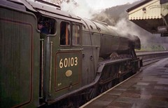 Llangollen, Wales 13th February 1995 (loose_grip_99) Tags: llangollen wales uk railway railroad rail train steam engine locomotive preservation transportation lner a3 462 pacific 60103 rain gassteam uksteam trains railways driver experience datex 1995 flyingscotsman february