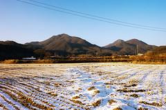 Fields (OzGFK) Tags: 35mm asia korea nikkor nikon seoul analog city film urban dreamycameracafe portra160vc kodak portra snow winter cold country countryside landscape barren evening