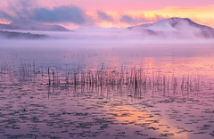 Misty Morning (jeanineleech) Tags: adirondackmountains adirondacks places raquettelake sunrise autumn color fall foliage lake mountains reeds water newyork usa mist misty fog foggy