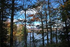 Chittenden, Vermont - 10/16/18 (myvreni) Tags: vermont autumn fall nature outdoors pond lake