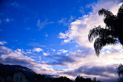 Floating (supercell70) Tags: sky skies mountain tree trees landscape landscapes blue cloud clouds