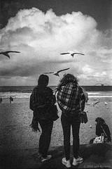 Manly beach, Sydney, spring 2018  #014 (lynnb's snaps) Tags: tmaxdeveloper tmax3200 xa4 bw film olympusxa4 zuiko28mmf35macro 2018 sydney australia manlybeach kodaktmaxp3200 blackandwhite bianconegro blackwhite bianconero biancoenero blancoynegro noiretblanc schwarzweis monochrome ishootfilm seagulls birds clouds beach coast sand surf girls