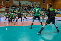_FPV3039 (américodias) Tags: viana365 benfica sporting voleibol fpv