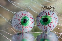 halloween trickery and treats (sure2talk) Tags: macromondays trickortreat halloweentrickeryandtreats treats tricks spider web chocolateeyeballs mist fake reflection nikond7000 nikkor85mmf35gafsedvrmicro macro closeup flickrfriday