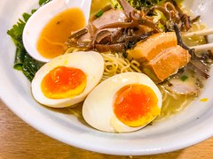 Eating Hakata Ramen Noodles - Thick Tonkotsu Broth Soup, Thin and Hard Ramen Noodles - Stock image (DigiPub) Tags: 1062446038 istock 284043237 2018 boiled boiledegg braised charsiu closeup dinner eating ediblemushroom egg eggyolk food foodanddrink freshness fungus halloween halved healthyeating horizontal japan japaneseculture japanesefood meal night nopeople nori october organic partof partofaseries photography pork porkbelly ramennoodles restaurant seaweed takenonmobiledevice thick thin vegetable