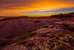 Jurmo Island, Finland. (Esa Suomaa) Tags: esasuomaa jurmo finland thegulfoffinland saaristo islands autumn europe olympusomd