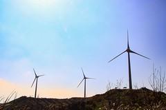 Windmill on the hill (alex291556) Tags: taiwan miaoli trip travel attraction scenery windmill sky canon eos 80d camera photography 台灣 苗栗 苗栗景點 好望角 風車 天
