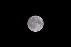 DSCF6351.jpg (Ryo(りょう)) Tags: night sky fujinonxf55200mmf3548rlmois tokyo fujifilmxh1 japan moon