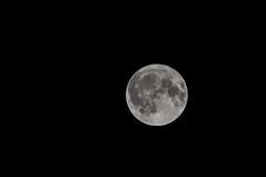 Pleine lune (Patrick Boily) Tags: pleine lune full moon night photo
