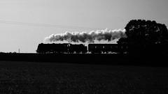 Royal Scot steaming home... (Keith Wilko) Tags: royalscot lmsroyalscot 46100 46100royalscot royalscot46100 brroyalscot svr severnvalleyrailway svrautumnsteamgala blakedown kidderminster 7p steamlocomotive train trains railways silhouette crewe royalscotlocomotiveandgeneraltrust smoke steam brsteam mainlinesteam gbsteam gbsteamtrains uksteam uksteamtrains steaminmonochrome monochrome blackandwhite monochromesteamtrains