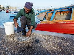 A iuse d'pulpe (Marco Crupi Visual Artist) Tags: polpo pesca polipo fish fisherman bari italia italy travel viaggio viaggiare pescatore pescatori