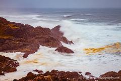 Tacking Point, Port Macquarie (Peter.Stokes) Tags: sea portmacquarie newsouthwales australia au waves sand rocks nature light colour