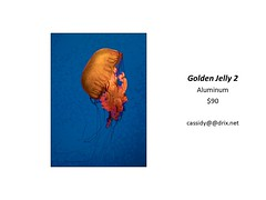 "Golden Jelly 2 • <a style=""font-size:0.8em;"" href=""https://www.flickr.com/photos/124378531@N04/30423649967/"" target=""_blank"">View on Flickr</a>"