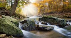 447 (iv1984) Tags: stream river water rock rocks mist fog sunray tree forest autumn fall waterfall olympus omd 918mm canada ontario hamilton albion falls landscape long exposure