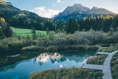 National Park Zelenci (freyavev) Tags: zelenci nationalpark slovenia slovenija source water lake nature vsco mikasniftyfifty sava dolinka savadolinka julianalps alps outdoor hiking kranjskagora
