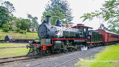 QR C17 No. 802 - Mary Valley Railway, Gympie (Peter.Stokes) Tags: australia australian colour landscape outdoors photo photography railways railway trains transport queensland