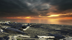 Crissey Field State Park, Oregon (icetsarina) Tags: crisseyfieldstatepark oregon sunset ocean coast clouds driftwood sand combinedimages