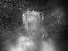2018-10-16 - 183 - BW (vmax137) Tags: 2018 washington wa iron horse state park snoqualmie tunnel snag tag haunt panasonic dcg9 black white bw