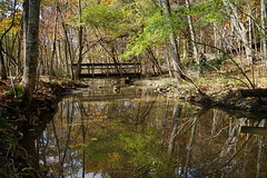 Reflections by the bridge (D. C. Wilson) Tags: water reflection tree sunlight shoreline outdoor park nature serene river forest charleston ohio sony