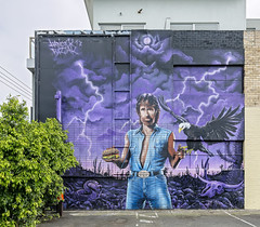 Hancock Bizjak Thornbury 2018-11-03 (5D_32A5928) (ajhaysom) Tags: hancock rad thornbury melbourne australia streetart graffiti canoneos5dmkiii canon1635l