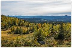 På vei til fjells 16.09.2028 (Krogen) Tags: norge norway norwegen akershus oppland nordreland synnfjellet krogen høst autumn panasoniclumixgx7
