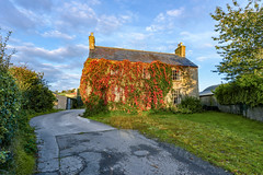 """The Ivy Homestead"" (Gareth Wray - 10 Million Views, Thank You) Tags: old abandoned lisky liskey road sion kees ivy virginia creeper red green vine plant climber climbing house northern ireland ulster ni uk scenic landscape county tyrone gareth wray photography strabane nikon nikkor sky autumn autumnal sun traditional set tourist tourism site visit countryside country side scape grass sunset irish colourful photographer home vacation holiday europe farm homestead stead rise field d810 1424mm tree"