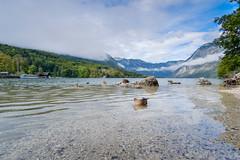 Bohinj Lake. Slovenia.