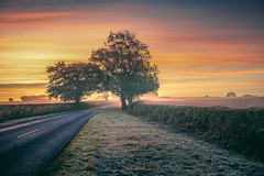 Morning Delights (unciepaul) Tags: sunrise sunday trees landtreesky autumn road frosty cold october england