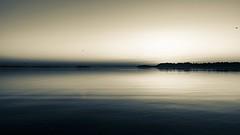 auf_der_freiheit_sw (Leif Junghans) Tags: schleswig schlei freiheit sunrise sonnenaufgang