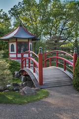 Japanese Garden #3 - Red Bridge and Pagoda (Patti Deters) Tags: japanese garden pagoda path vertical building bridge red water stream wood wooden painted calm peaceful island trees stones architecture park river creek scenic outdoors landscape japanesegarden normandalecommunitycollege minnesota pattideters arch railing 3