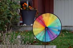 Regnbågens dans (tusenord) Tags: fotosondag regnbåge color trädgård langexponering fs181028 rainbow snurra garden longexposure spin wind
