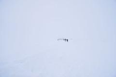 Whiteout (donna.quijote...) Tags: whiteout titlis mountain berg schweiz swiss urlaub vacancy travel bodensee pilatus gebirge mountains ice snow schnee clacier gletscher vierwaldstädtersee töss alpen alpes rhein rheinfall