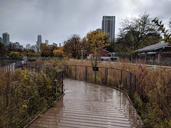 Rainy (ancientlives) Tags: chicago illinois il usa travel trips lincolnpark lincolnparkzoo farm nature natureboardwalk rain wet reflections water clouds weather pond southpond walking friday november autumn 2018 city towers skyline skyscrapers cityscape