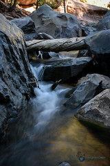 Utah_2018_ (51 of 144) (jasinrodriguez) Tags: zion trekking family narrows subway zionnationalpark nationalparks outdoors
