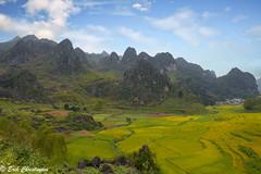 -c20180916-810_9770-2-2 (Erik Christensen242) Tags: đồngvăn hàgiang vietnam vn landscape colot