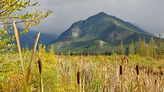Stormy day (Banff, Canada) (armxesde) Tags: pentax ricoh k3 canada kanada banff banffnationalpark rockymountains alberta mountain berg herbst autumn fall np