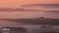 (Joaquim Pinho Photography) Tags: south downs sussex joaquim pinho landscape photography national park uk