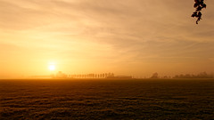 Misty Sunrise (Alfred Grupstra) Tags: sunset nature silhouette landscape sky sunrisedawn agriculture field sun dusk outdoors scenics sunlight backlit ruralscene summer horizon orangecolor dawn beautyinnature mist